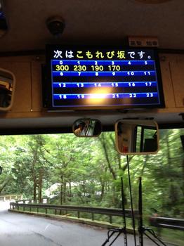 木漏れ日坂写真1.43m.jpg